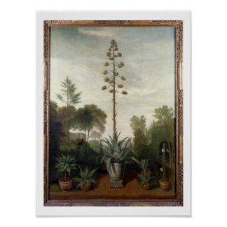 T33047 A Botanical Garden Poster