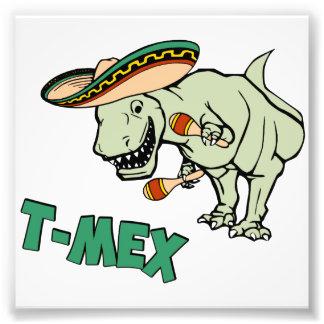 T-Mex T-Rex Mexican Tyrannosaurus Dinosaur Photo Print