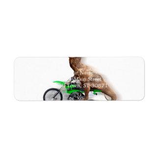 T rex motorcycle - t rex ride - Flying t rex