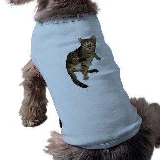 T-shirt for Mascot