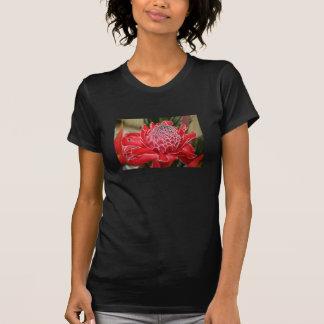 T-shirt rouge exotique de fleur de gingembre de