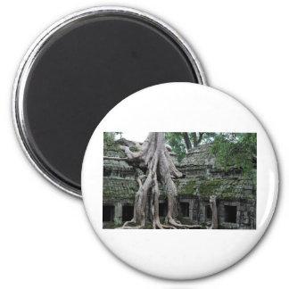 ta prohm temple  in cambodia magnet