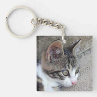 Tabby and White Kitten Double-Sided Square Acrylic Keychain