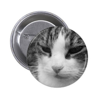 Tabby Cat Black & White Photograph 2 Inch Round Button