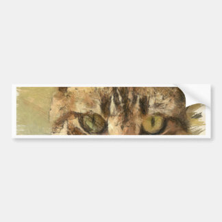 Tabby Cat Bumper Sticker