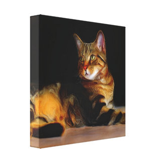 Tabby cat stretched canvas print
