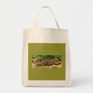Tabby Cat canvas bag