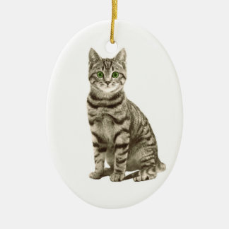 Tabby Cat Ceramic Ornament