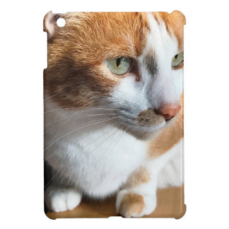 Tabby cat closeup iPad mini cases
