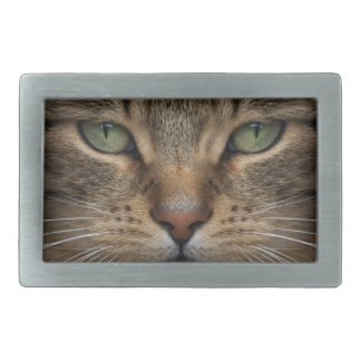 Tabby Cat Face Rect Belt Buckle