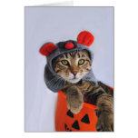Tabby Cat In Mouse Costume Card