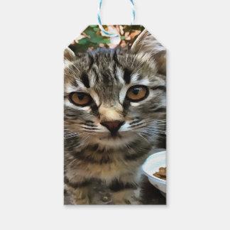 Tabby Cat Kitten Making Eye Contact Gift Tags