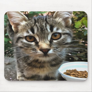 Tabby Cat Kitten Making Eye Contact Mouse Pad