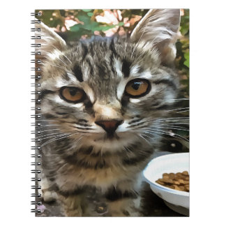 Tabby Cat Kitten Making Eye Contact Notebooks