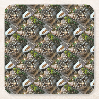 Tabby Cat Kitten Making Eye Contact Square Paper Coaster