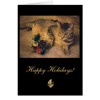 Tabby cat: Merry Christmas! Greeting Card