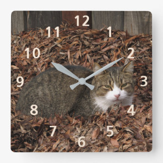 Tabby Cat Numbered Autumn Leaves Clock