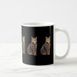 Tabby cat on black background coffee mug