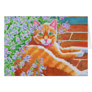 Tabby Cat on Garden Path Card