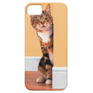Tabby cat peeking around wall iPhone 5 cover