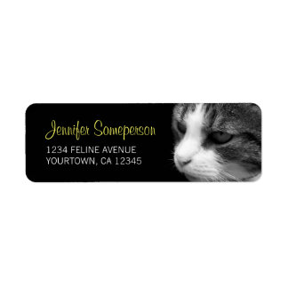 Tabby Cat Photograph Return Address Label