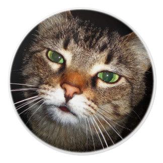 Tabby Cat Pull Ceramic Knob