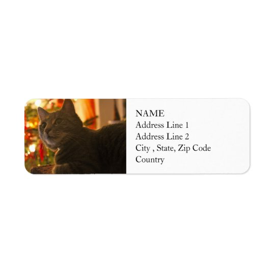 Tabby Cat Purr-fect Holiday Season Return Address Label