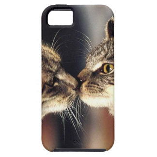 Tabby Cat Reflections iPhone 5 Cases