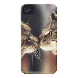 Tabby Cat Reflections iPhone 4 Case