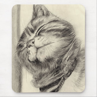 tabby cat scritching mousemat mouse pad
