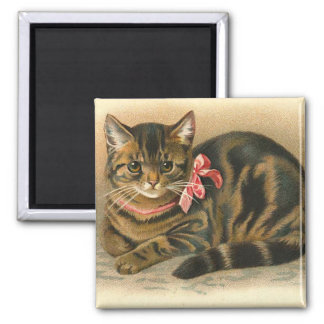 """""""Tabby Cat"""" Square Magnet"""