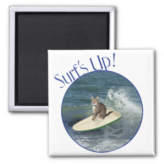 Tabby Cat Surf's Up! Magnet