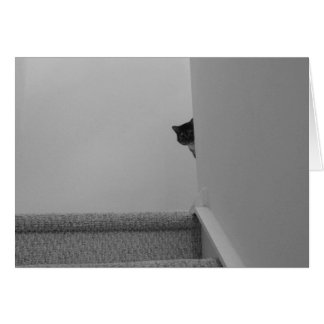 Tabby Cat - Watching, card