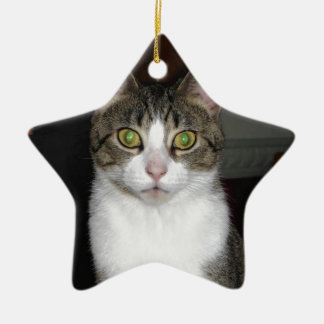 Tabby cat with big green eyes ceramic ornament