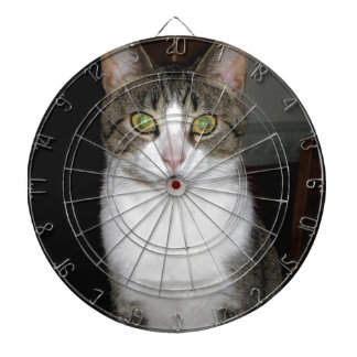 Tabby cat with big green eyes dartboard