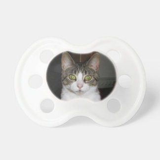 Tabby cat with big green eyes pacifier