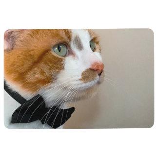 Tabby cat with bow tie floor mat