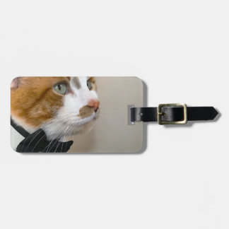 Tabby cat with bow tie luggage tag