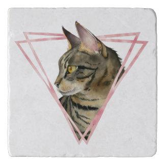 Tabby Cat with Faux Blush Metallic Frame Trivet