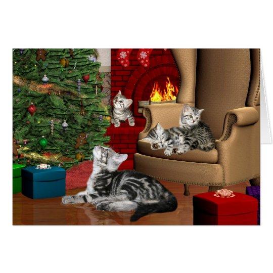 Tabby family Christmas Card