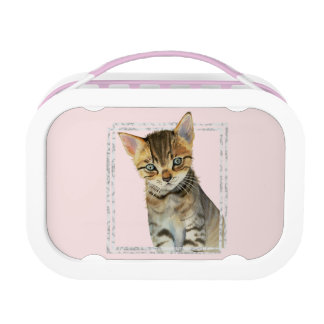Tabby Kitten Painting with Faux Marble Frame Lunch Box