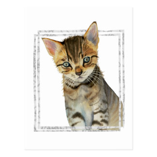 Tabby Kitten Painting with Faux Marble Frame Postcard