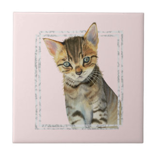 Tabby Kitten Painting with Faux Marble Frame Tile