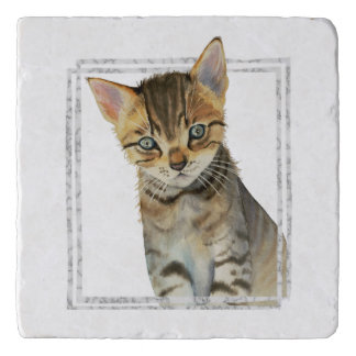 Tabby Kitten Painting with Faux Marble Frame Trivet