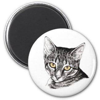 Tabby Kitten Sketch Magnet
