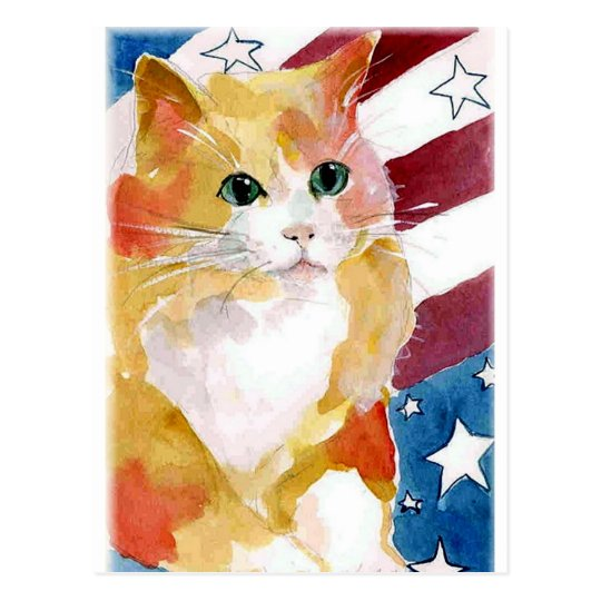 Tabby Kitten Stars & Stripes Postcard