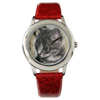 Tabby Kitten Watch