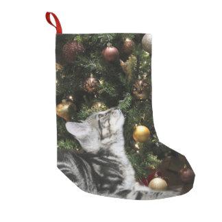 Tabby kitty small christmas stocking