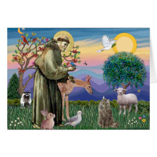 Tabby Norwegian Forest Cat - St Francis Greeting Card