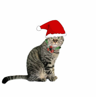"""Tabby Santa Cat with Red Hat 2""""x3"""" Ornament Photo Sculpture Ornament"""